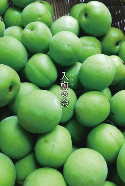 tsuirinokai_OL